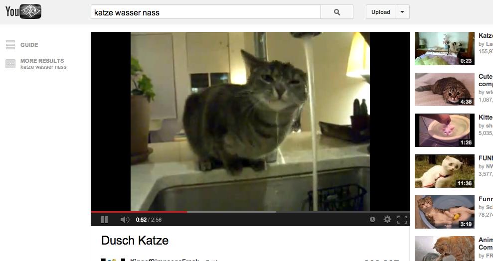 youtube-katze